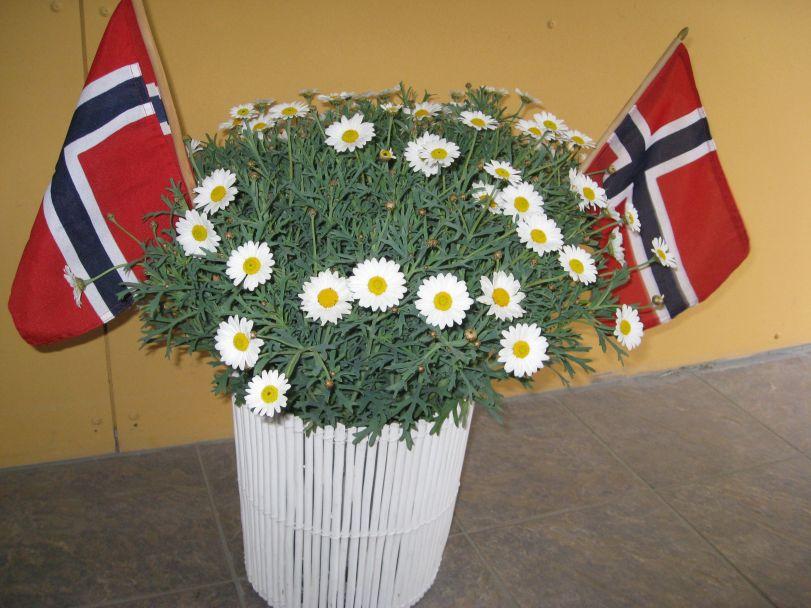 Blomster på 17. mai    Foto: J.K. BLess