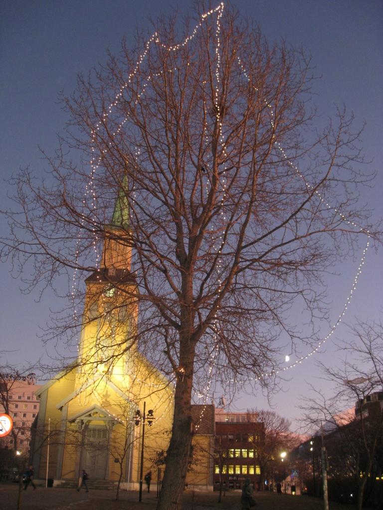 Domkirka og månen, sistnevnte skimtes så vidt innimellom greiene på treet.