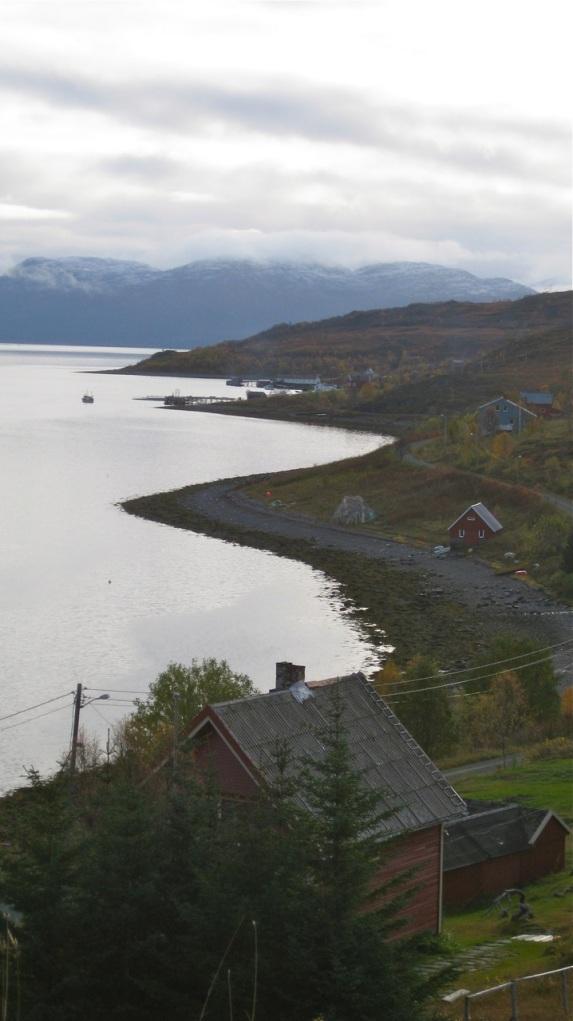 Utsikt fra Lauparen