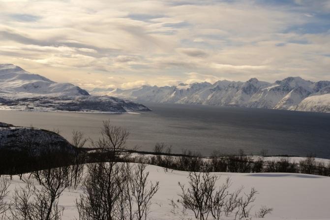 Utsikt mot Lyngsalpene.