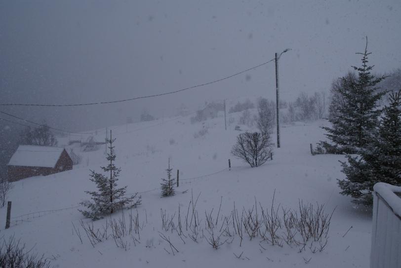 Snøstorm på Skaga