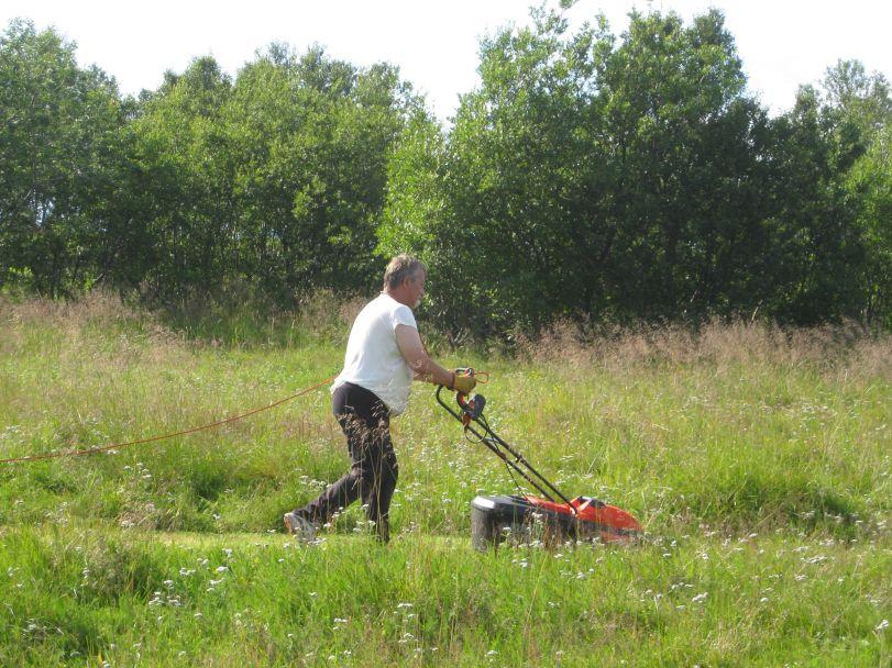 Knut klipper gresset