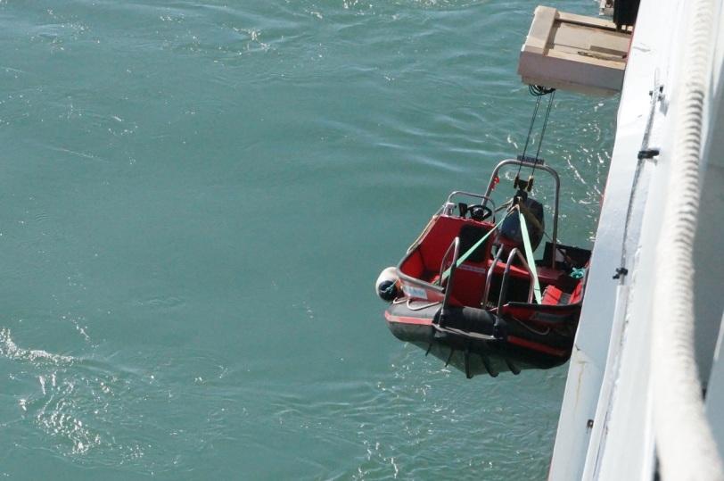 Sark Ut med tenderbåten